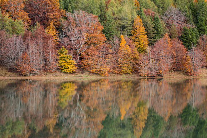 Autumn colors - Max Barattini | PHOTO