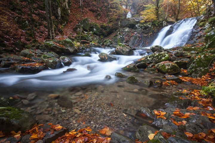 Waterfall in autumn - Max Barattini | PHOTO