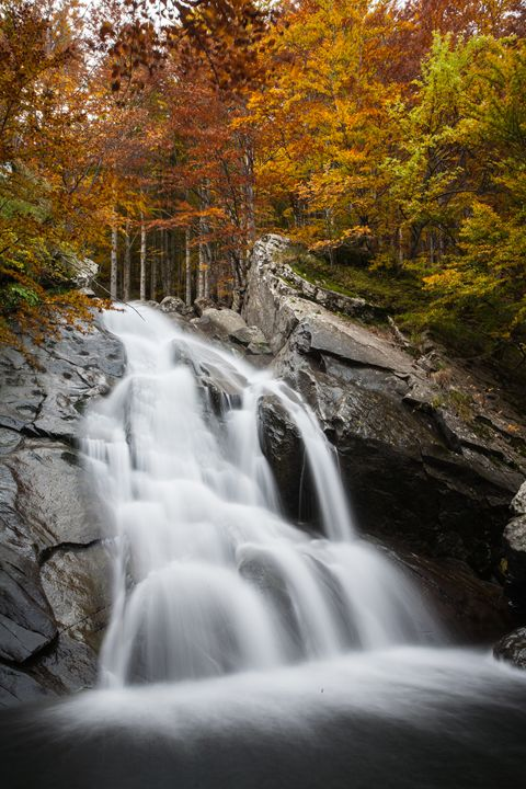 Autumn waterfall - Max Barattini | PHOTO