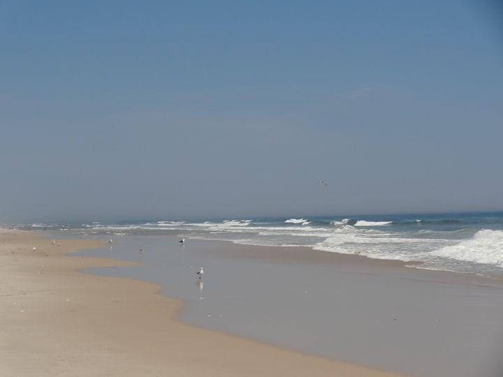Summer Beach - Rice Photography