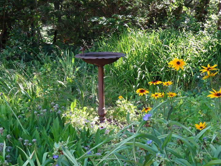 Garden Birdbath - Rice Photography