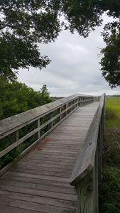 Walk on a NC marsh - Paula Ray