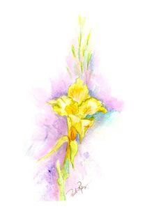 Yellow Glad