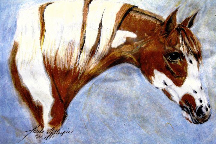 Spotted Pony - Paula Ray