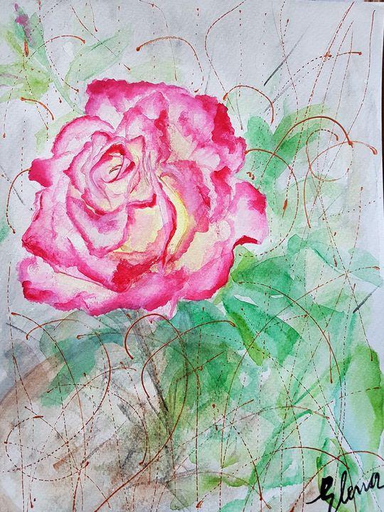 Rose #38 - Elena Kovács