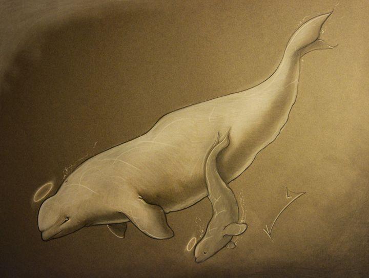 Beluga - Itsredribbon