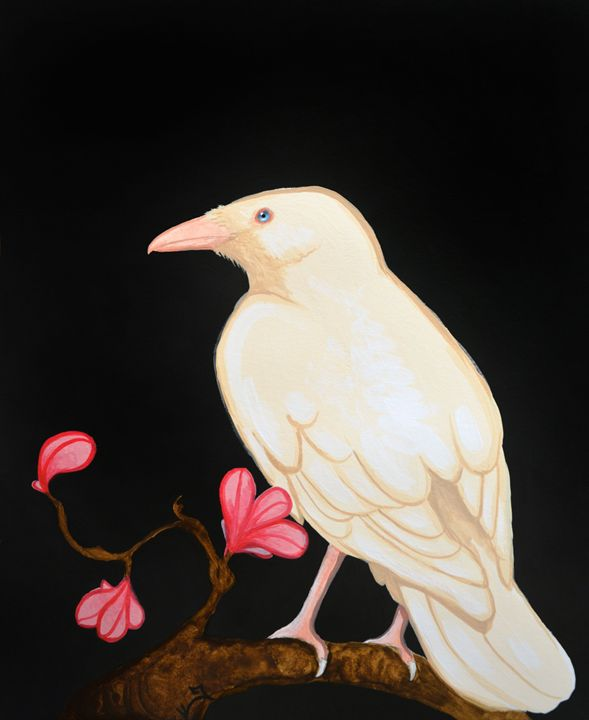 White Raven - Itsredribbon