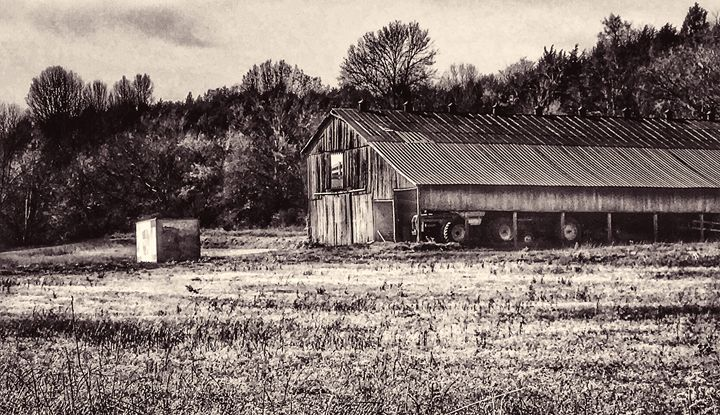 Old Kentucky Barn - Norris Images