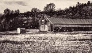 Old Kentucky Barn