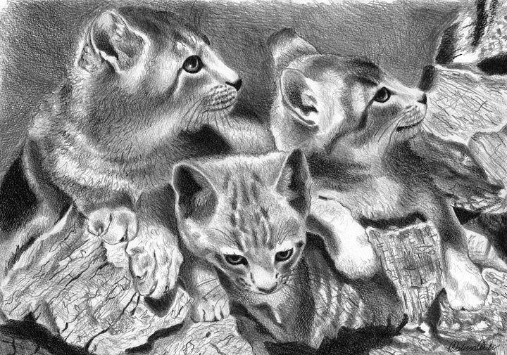 Three little kittens - Melissa White (Easelartworx)