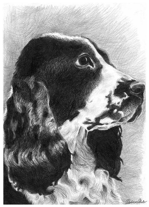 Cocker Spaniel portrait - Melissa White (Easelartworx)