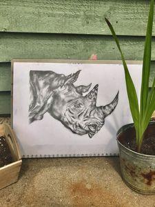 Original Tonal Rhino Drawing