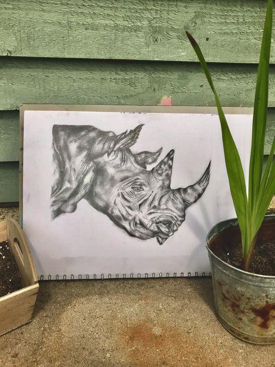 Original Tonal Rhino Drawing - Hannah Rondel