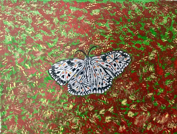 Butterfly in Garden - Rinky