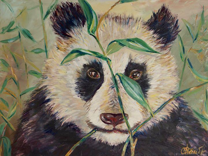 Panda - Olga Prin