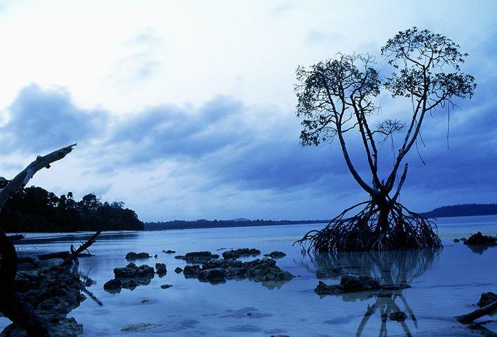 andaman islands 1 - easywind