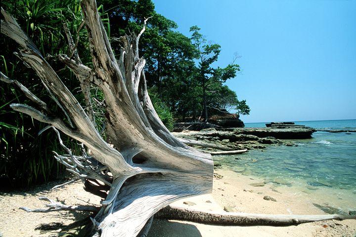 andaman islands 14 - easywind