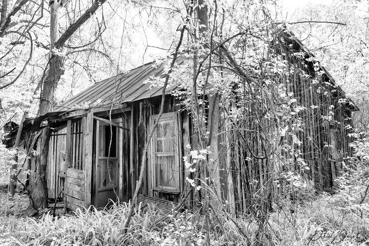 Old abandoned Cabin - Patrick Dezothez