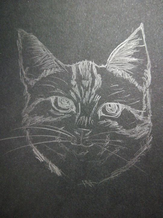Purrfect Thought - Phsycome Art
