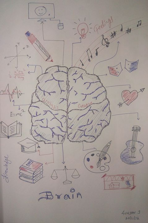 The BRAIN - Pen Sketches