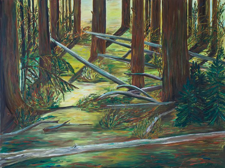 Wild Forest (Banff) - ZUEYA