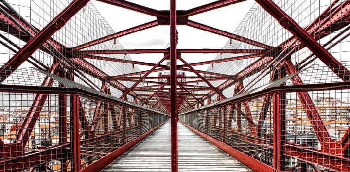 Vizcaya Bridge - Bentivoglio Photography