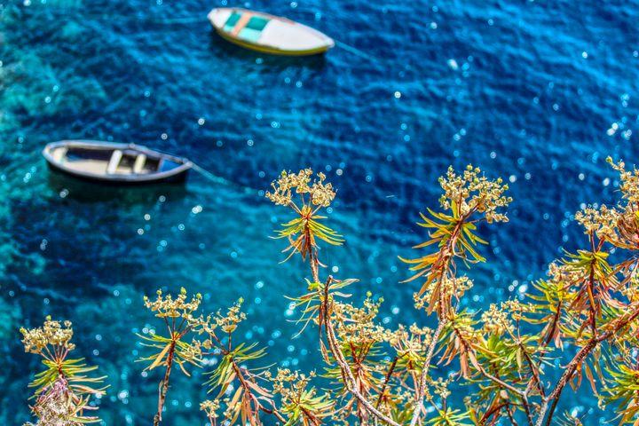 Small Boats - Bentivoglio Photography