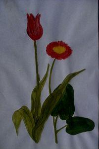 Tulip & lotus flowers