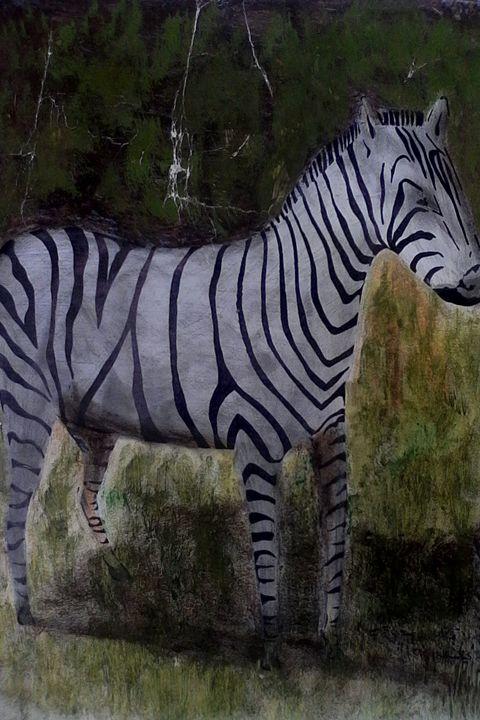 zebra - CAM's art