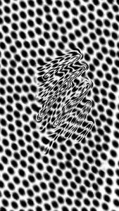 Zebra Droid
