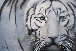 Original Oil Painting White Tiger
