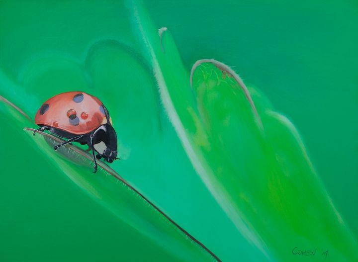 Lady Bug Original Oil Painting - Realistic Animal Art