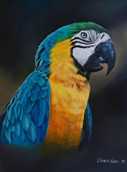 Ara Arauna, blue-and-yellow macaw - Realistic Animal Art