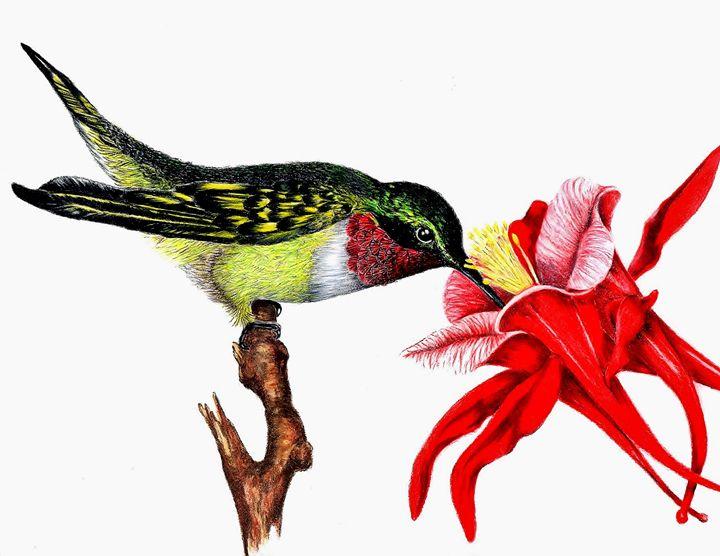 Hummingbird - MLC Creations