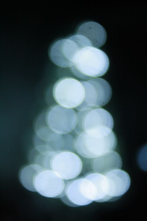 Bokeh, Christmas tree - louisa