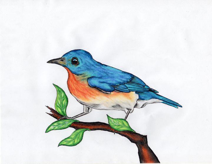 Blue bird - Mark's Art