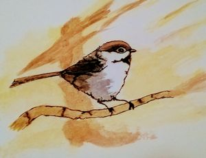 Sparrow Watercolor