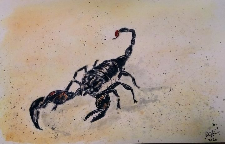 Scorpion Watercolour - Robert Young