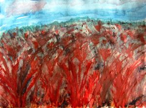 The red field