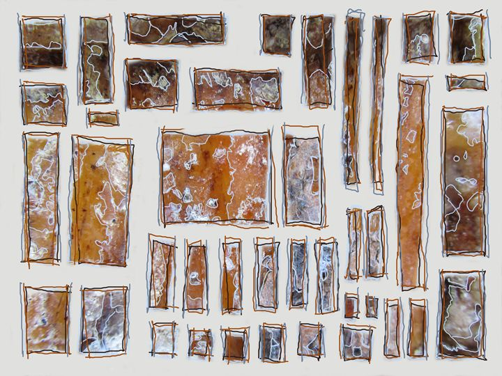 Tree bark - Calico Studio