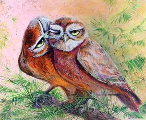 Love of Owls
