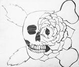 Black and White Skull Rose