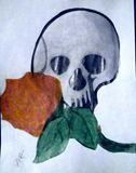 Fire Rose and Skull  Drawing 8x11