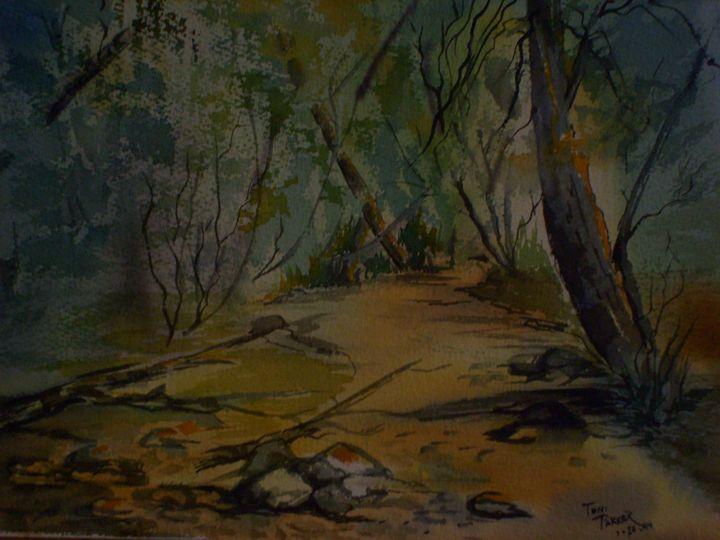 Dry River Bed - Antoinette Parker