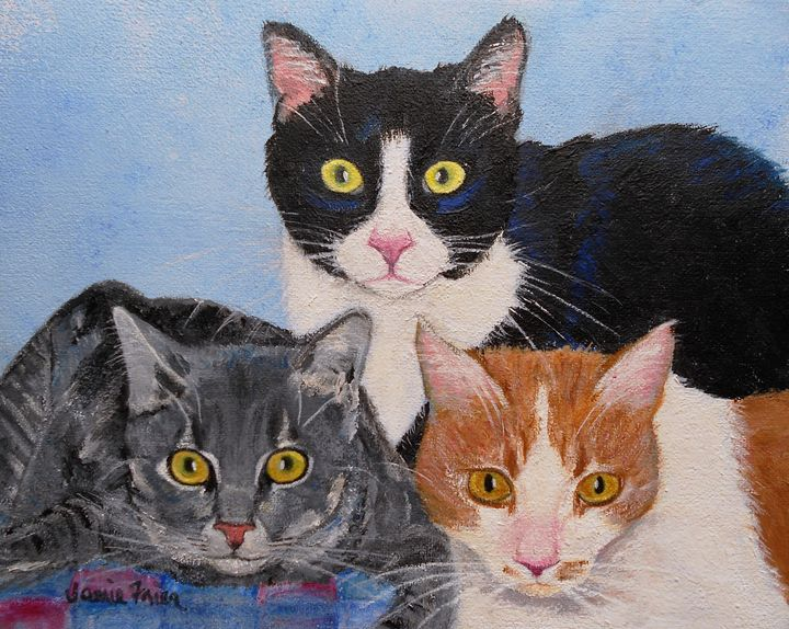 Three Amigos - Vivid Perceptions by Jamie Frier