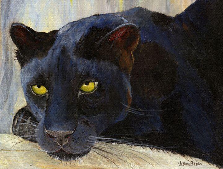 Black Cat - Vivid Perceptions by Jamie Frier