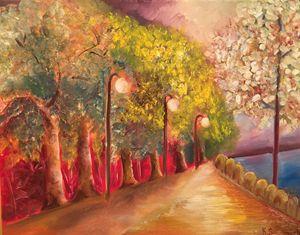 The Illuminated Path Along the River