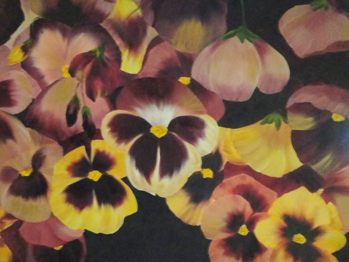 Pansy Medley - Paintings by Yolande
