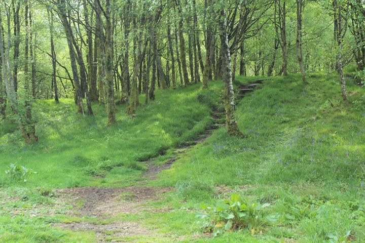 hidden stairs - Leire Sedgwick