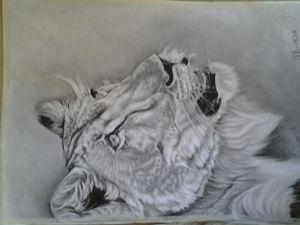 tamed lion
